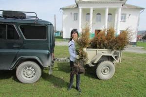 Субботник по благоустройству Курджиново 2014